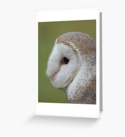 Fluffy face - barn owl profile Greeting Card