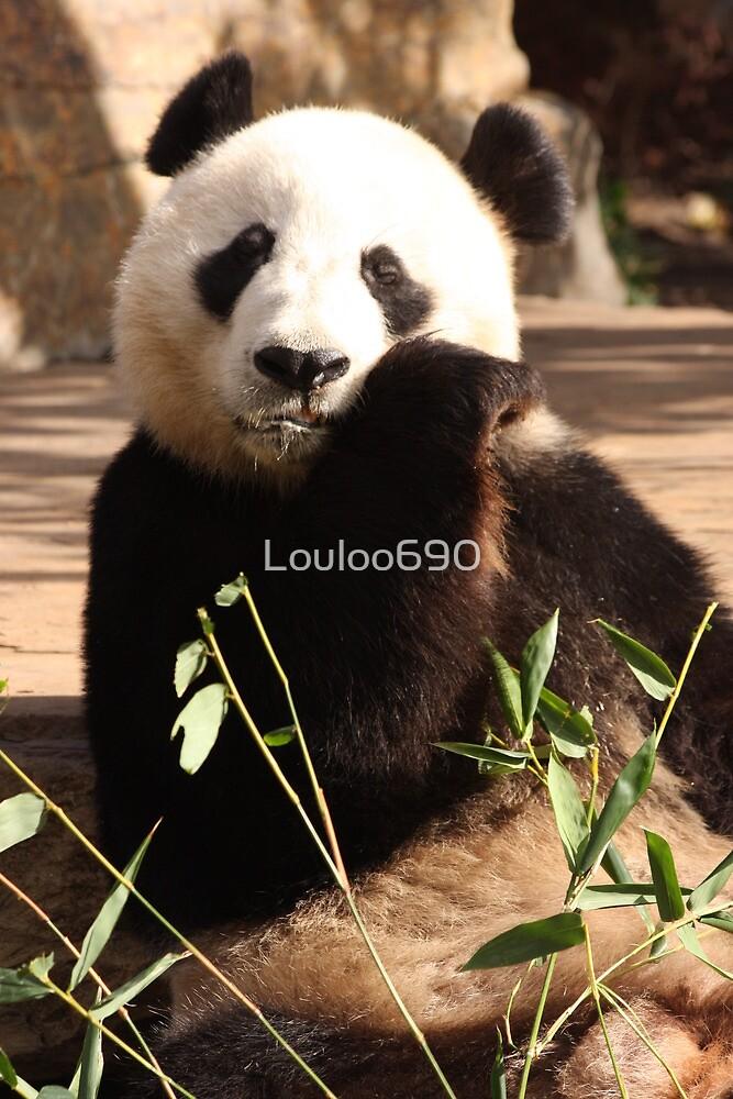 Wang Wang by Louloo690