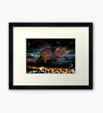 ©DA P02A14 Electromagnetic Fields ABD Framed Print