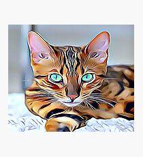 Lámina fotográfica El gato de bengala
