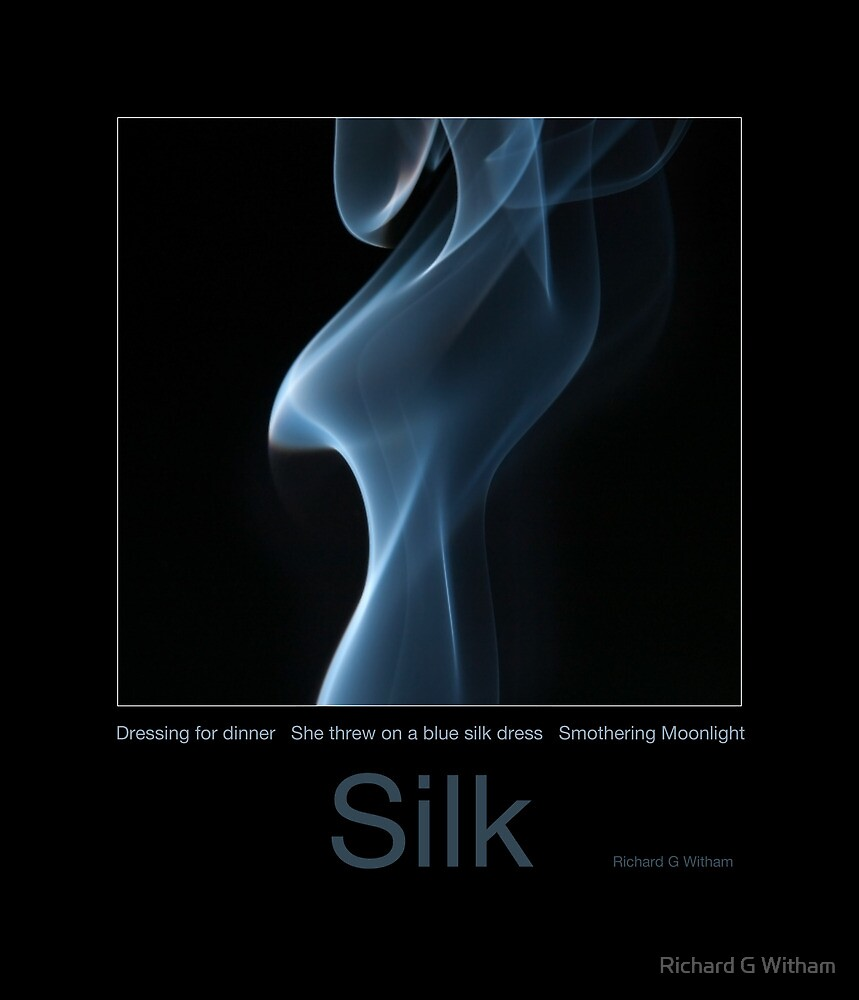 Silk Poster by Richard G Witham