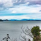 A View from Camano Island by Bryan D. Spellman