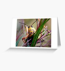 Hopper Greeting Card