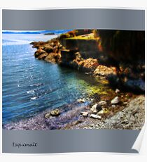 Esquimalt Beach Poster