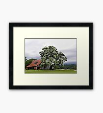 Magestic Tree, and Childhood Memories   Framed Print
