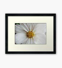 Flora macro Framed Print