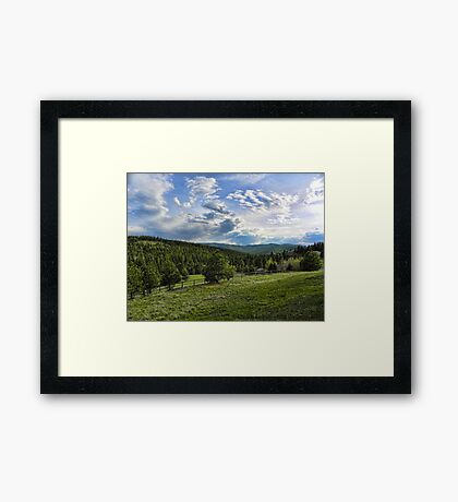 Mountain Meadow Framed Print