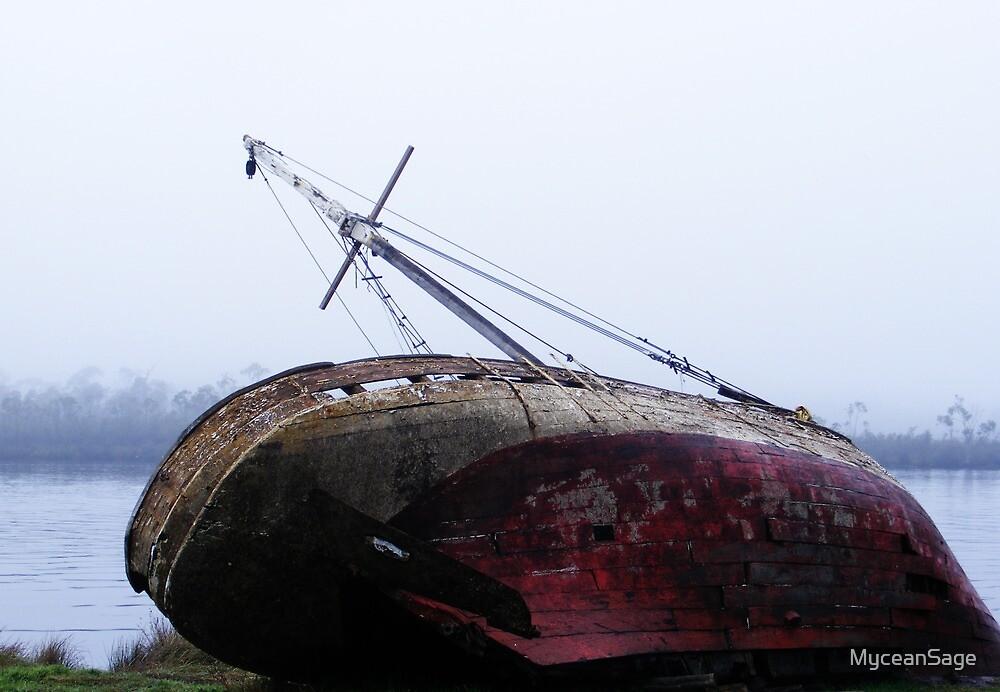 Huon Boat Wreck by MyceanSage