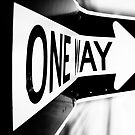 One Way? by Bob Larson