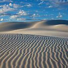 Super Dune by Stephen  Williams