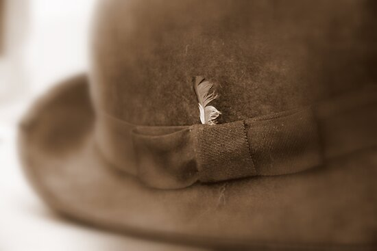Feather in His Cap by coffeebean