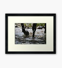 After the ride - Flowerdale Victoria Framed Print