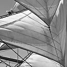 Sails by Neil Messenger