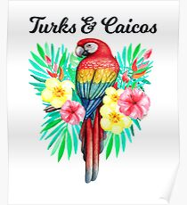 Turks & Caicos Beautiful Hand Drawn Tropical Parrot In Tropical Flowers /Foilage  Poster