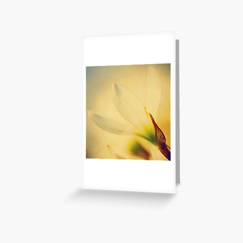 Sunkiss Greeting Card