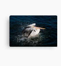 Splashing about Canvas Print