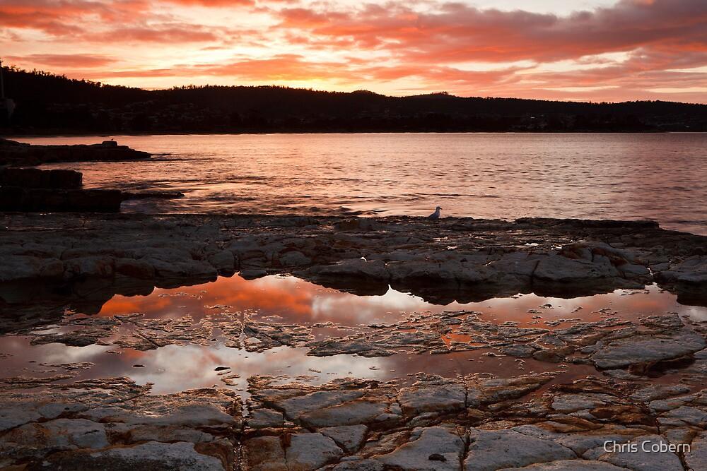 Bellerive Bluff Sunrise #2 by Chris Cobern