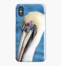 Pelican Eye iPhone Case/Skin