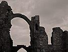 The Priory Ruins by Ryan Davison Crisp