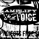 amplify your voice by ShellyKay