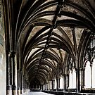 Cloister by Sue Frank