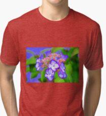 Fanciful  Tri-blend T-Shirt