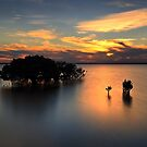 Sunset at the Grantville Mangroves by Jim Worrall