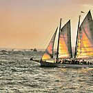 Sunset On The Hudson by joan warburton