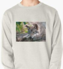 Timber Wolf Pullover