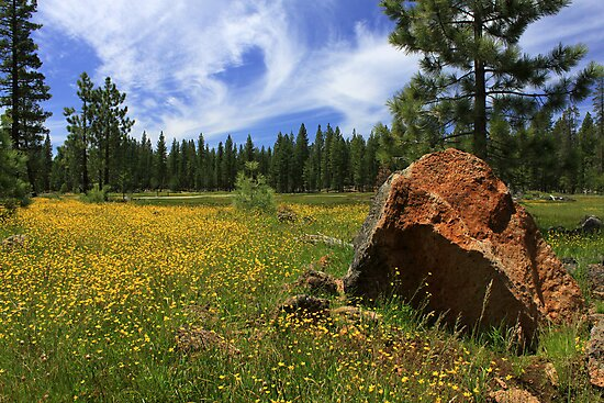 Springtime In Lassen County by James Eddy