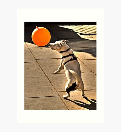 The Dog Who Loves His Balloon. Art Print