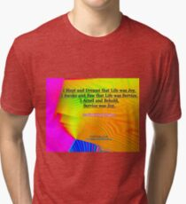 I Slept and Dreamt Tri-blend T-Shirt