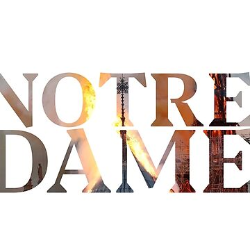 Notre Dame Cathedral by lolotees