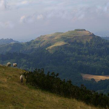 Malvern Hills at Dawn  by pault55