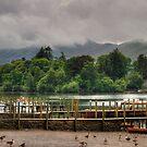 Derwent Island by Tom Gomez