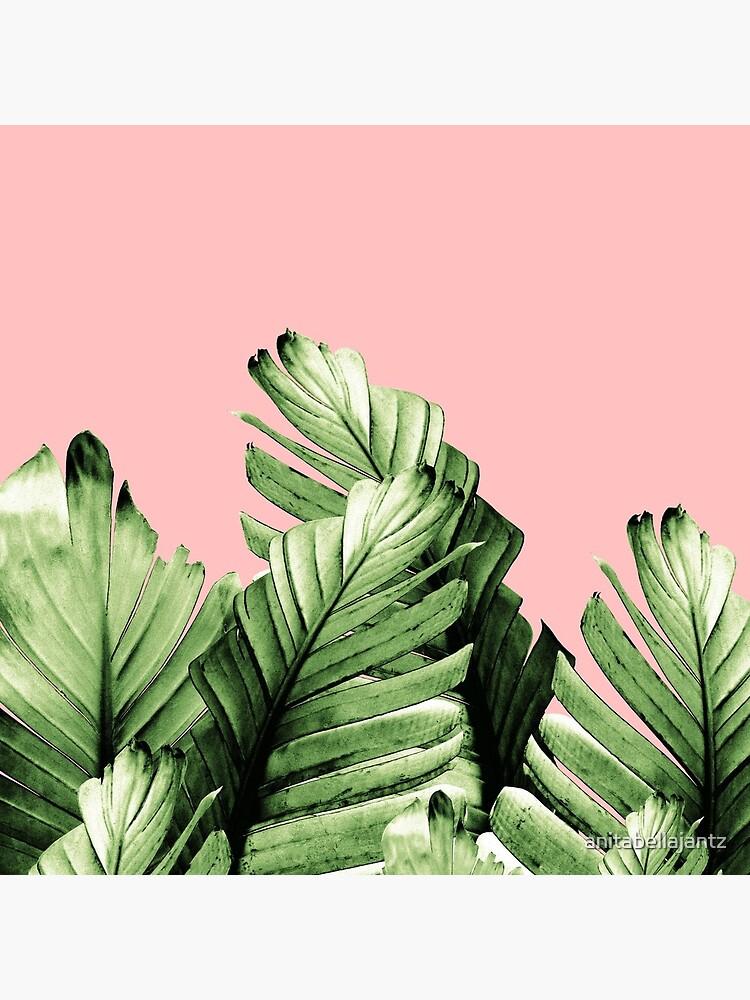 Blush Banana Leaves Dream #10 #tropical #decor #art  by anitabellajantz
