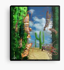 Ocean Invasion #5: Prawns of the Sonoran Metal Print