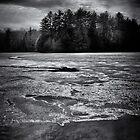 Gullwing Lake Nr. 1 von Brian Carson