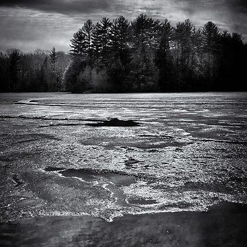Gullwing Lake No 1 by learningcurveca