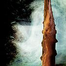 ancient water, wood......  early discoveries #2 by banrai