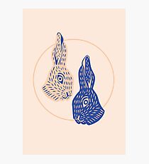 Rabbitybabbity Photographic Print