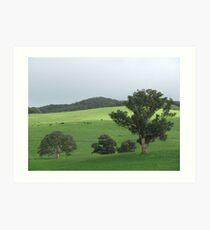 Country Landscape (6628) Art Print