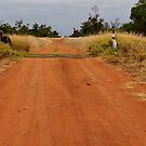 Rexeen - The Road to Coocoran Lake NSW Australia by Bev Woodman