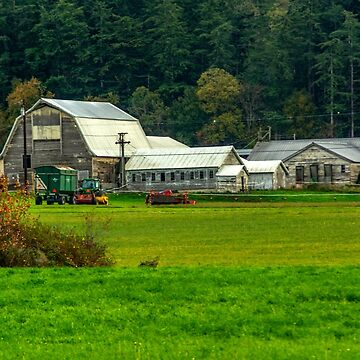 A Camano Island Farm by mtbearded1