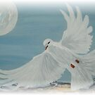 Peace by JoMitch
