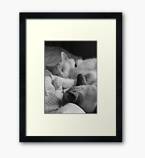 Casper and Mahtob Framed Print