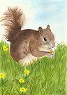 Squirrel by Martina Fagan