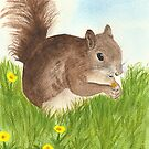 Squirrel by Martina Fagan