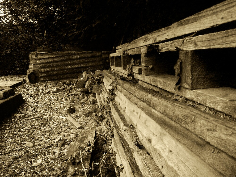 Papa's woodpile by Essenceofthefog