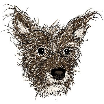 terrier scruff mix by maydaze